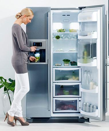 Tủ lạnh - Người bạn thân thiết của mọi gia đình